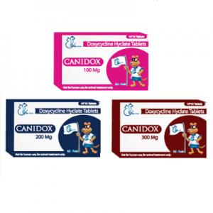 Canidox Tablets 100 mg, 200 mg and 300 mg