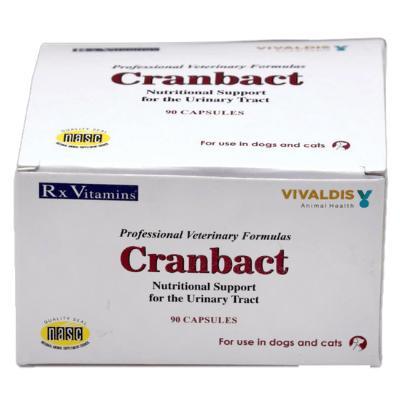 Cranbact Capsules cranberry extract for dog cat uti treatment medicine