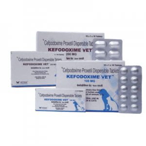 Kefodoxime Vet DT cefpodoxime Tablets for dogs