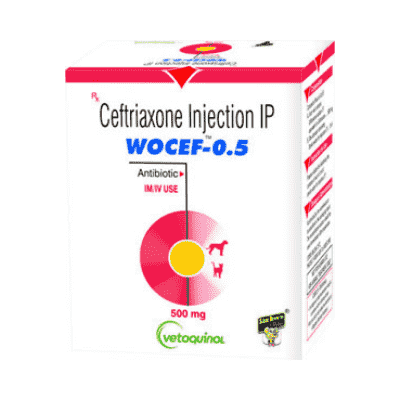 Wocef 500 ceftriaxone injection for dogs veterinary use