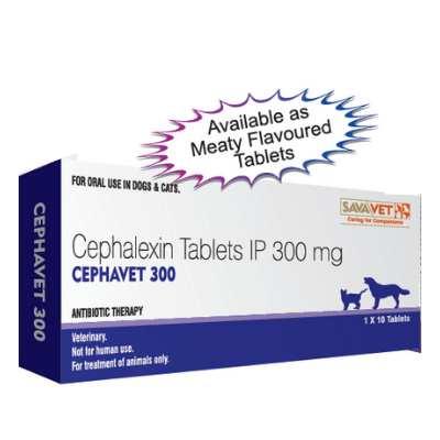 cephavet 300 cephalexin for cats